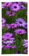 Purple Daisies Square Bath Towel