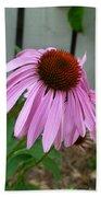 Purple Echinacea Hand Towel