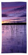 Purple Waters Bath Towel