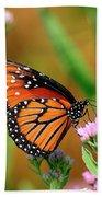 Queen Butterfly Hand Towel