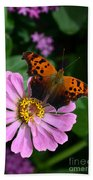 Question Mark Butterfly And Zinnia Flower Bath Towel
