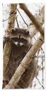 Racoon Bath Towel