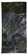 Racoon Emerging From The Woods Bath Towel