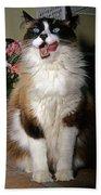 Ragdoll Cat Licks His Lips Bath Towel