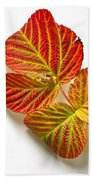 Raspberry Leaves In Autumn Bath Towel