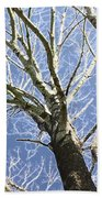 Reaching For The Sky Bath Towel