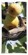 Red-bellied Woodpecker - Yummy Pears Bath Towel