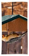 Red-bellied Woodpecker At Lunch Bath Towel