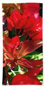 Red Bougainvillea Bath Towel