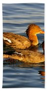 Red Breasted Mergansers Bath Towel