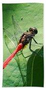Red Dragonfly          Bath Towel
