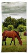 Red Horses Bath Towel