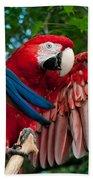 Red Macaw Bath Towel