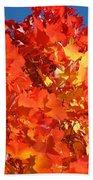 Red Orange Yellow Autumn Leaves Art Prints Vivid Bright Bath Towel