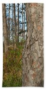 Red Pine Forest Bath Towel
