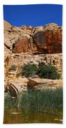 Red Rock Canyon The Tank Bath Towel