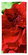 Red Ruby Dahlia Bath Towel