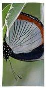 Red Spot Diadem Butterfly Bath Towel