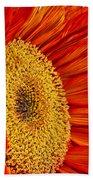 Red Sunflower V Bath Towel