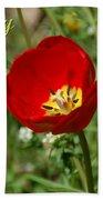 Red Tulip Birthday Bath Towel