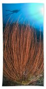 Red Whip Fan Coral With Diver, Papua Bath Towel