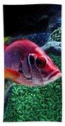 Redfish Bath Towel