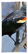Redwinged Blackbird I Bath Towel