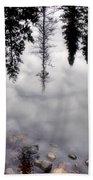 Reflective Wetlands Bath Towel