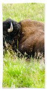 Resting Buffalo Bath Towel