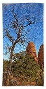 Rock Garden Skeleton Arches National Park Bath Towel
