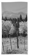 Rocky Mountain High Country Autumn Fall Foliage Scenic View Bw Bath Towel