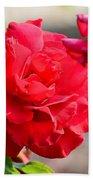 Rosas Roja Bath Towel