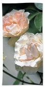 Rose 125 Hand Towel