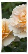 Rose Rosa Sp Just Joey Variety Flowers Bath Towel