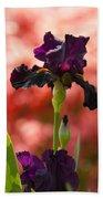 Royal Purple Tall Bearded Iris With Peachy Azalea Background Bath Towel