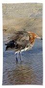Ruffled Reddish Egret  Bath Towel