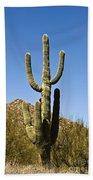 Saguaro Cactus Bath Towel