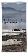 Salton Sea Birds Bath Towel