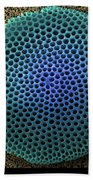 Saltwater Diatom Bath Towel