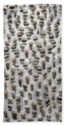 Salvia Polystachya Seeds Bath Towel