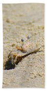 Sand Crab Digging His Hole Bath Towel