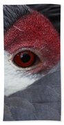 Sandhill Crane At Rest Bath Towel