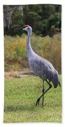 Sandhill In The Grass With Wildflowers Bath Towel