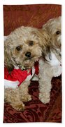 Santa Puppies Bath Towel