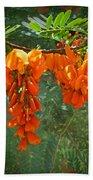 Scarlet Wisteria Tree - Sesbania Punicea Bath Towel