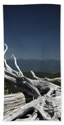 Sculpture By Mother Nature Bath Towel