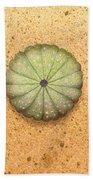 Sea Urchin Hand Towel