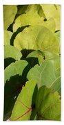 Seagrape Leaf Layer Bath Towel