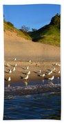 Seagulls At The Bowl Bath Towel