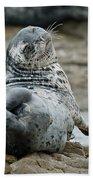 Seal Stretch Bath Towel